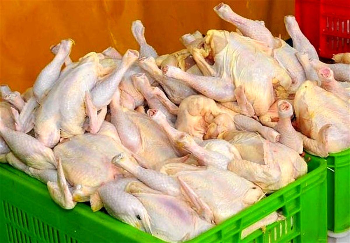 قیمت مرغ در بازار امروز چند؟