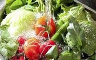 سبزیجات را قبل از مصرف حتما خوب بشویید