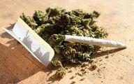 افزایش نگرانی خانوادهها از شیوع مصرف مخدر «گل»