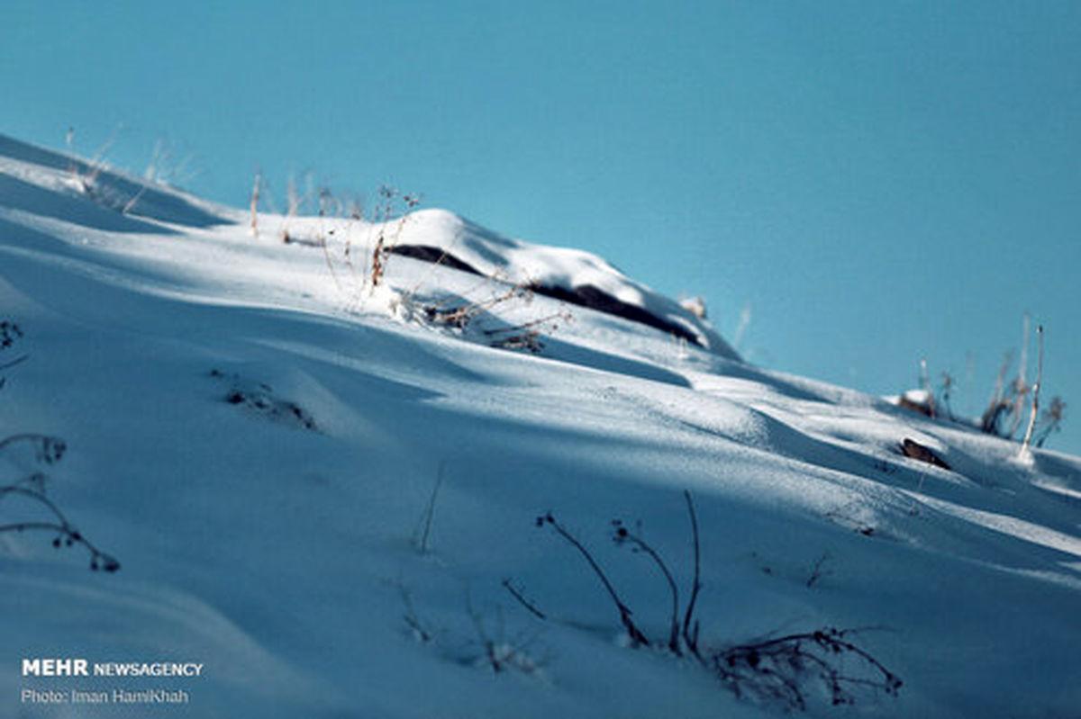 تصاویر: طبیعت برفی «دره مرادبیگ»
