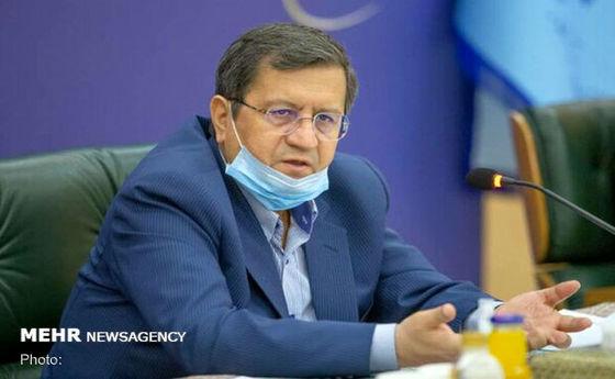 همتی: بانک مرکزی نرخ ارز را سرکوب نکرد