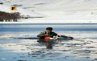 نجات فلامینگوی گرفتار در آب یخزده تالاب قوریگول +عکس