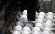 واردات هم تخممرغ را ارزان نکرد