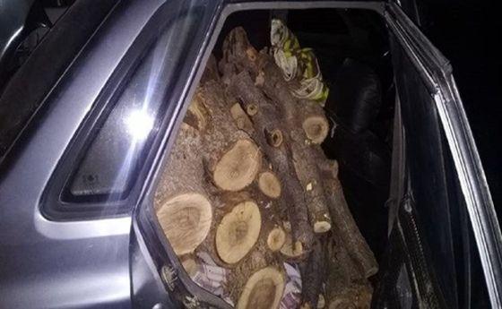 کشف یک تن چوب قاچاق از داخل پراید!
