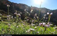 تصاویر: طبیعت پاییزی ایذه بهشت خوزستان
