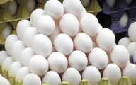 تخم مرغ در بازار ارزان شد؟