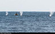 گزارش رزمایش دریایی ایران و روسیه