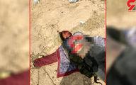 کشف جسد خورده شده یک زن در شیراز +عکس