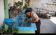 تصاویر: هنر مسگری در سرچشمه گرگان