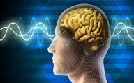 مرد آمریکایی ۱۰ سال با کرمی در مغزش زندگی میکرد