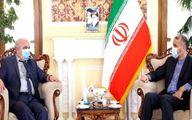 در دیدار امیرعبداللهیان با سفیر روسیه در تهران چه گذشت؟