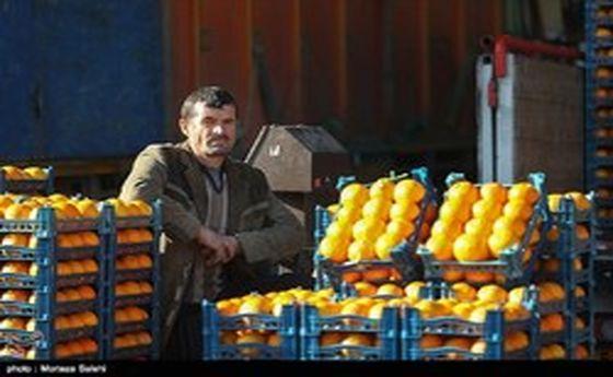 عرضه میوه شب عید در ۴۵۰ واحد در تهران