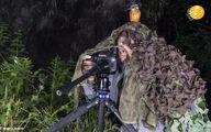 استتار جالب عکاس، ماهیخورک را فریب داد +تصاویر