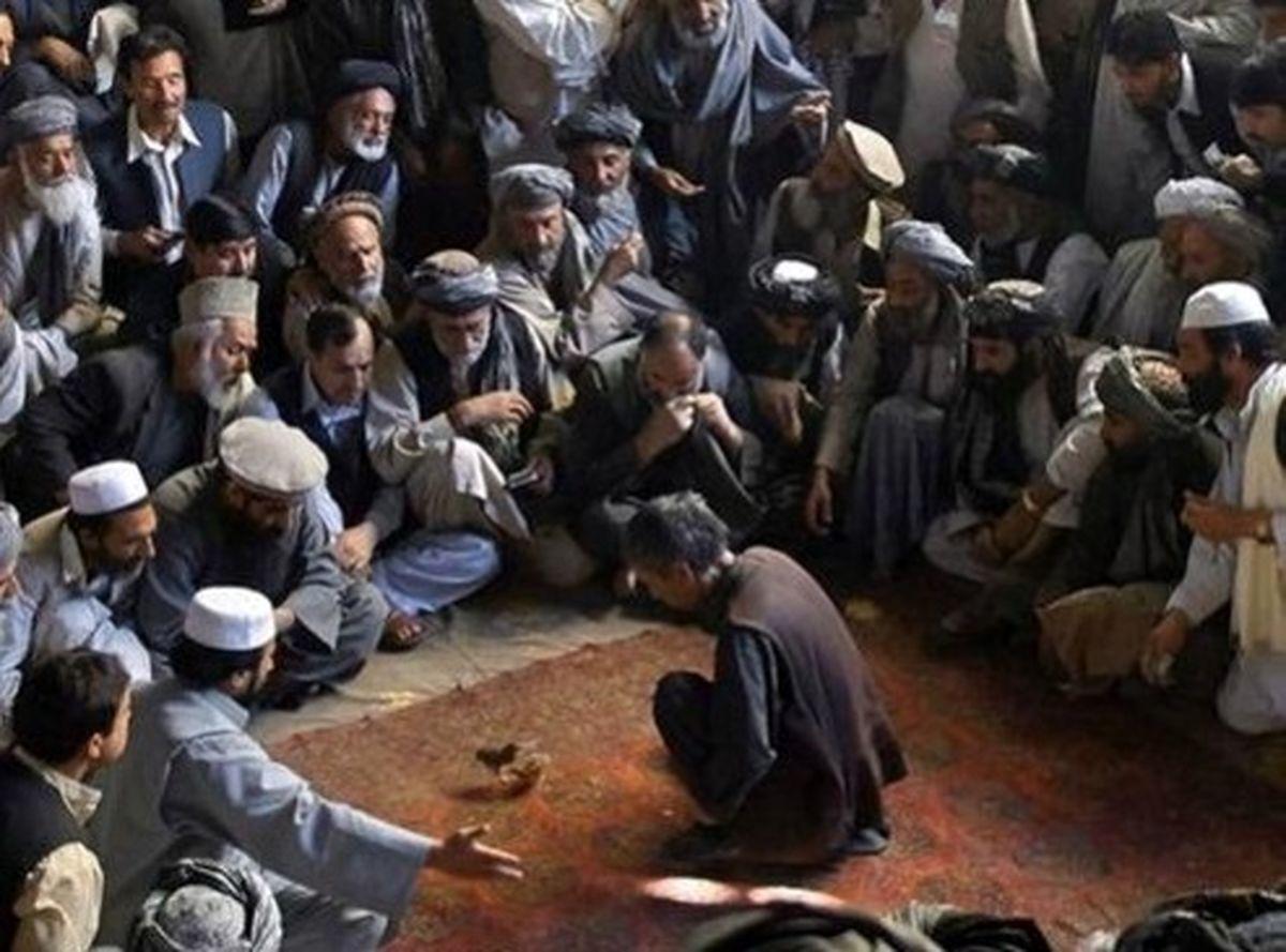 مسابقه جوجه جنگی +عکس
