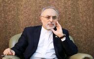 صالحی: فشارهایی که به ایران روا شده بر هر ملتی وارد میشد، فرومیپاشید