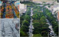 اینجا اروپا نیست خیابانی است زیبا در ایران +عکس