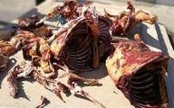 ماجرای عرضه گوشت الاغ در بازار