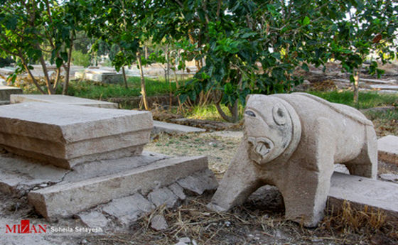 تصاویر: قبرستان دارالسلام شیراز