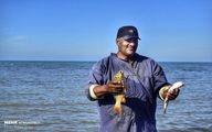 تصاویر: آغاز فصل صید ماهی در خزر