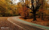 تصاویر: لمس پاییز در پارک جنگلی النگدره