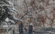 تصاویر: بارش برف پاییزی در شمال تهران