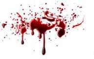 پلیسی که صاحب خانه را به قتل رساند