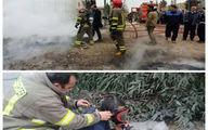 آتش سوزی در کارخانه تولید اسفنج در نسیم شهر