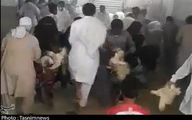 ماجرای حمله به مرغداری در نیکشهر +عکس و فیلم