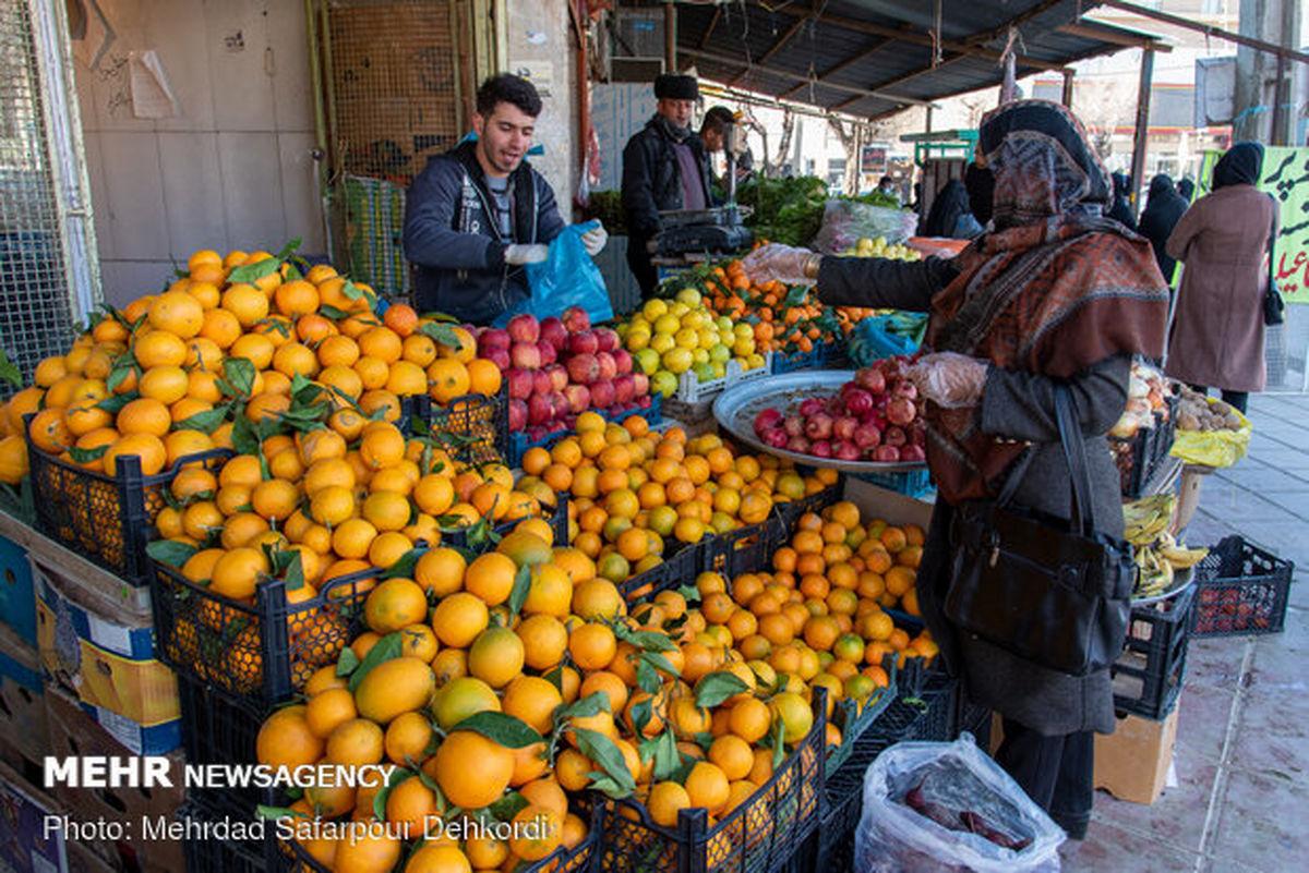 قیمت میوه در میادین میوه و تره بار