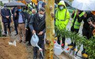عکس:شهردار تهران و آبیاری درخت زیر باران!
