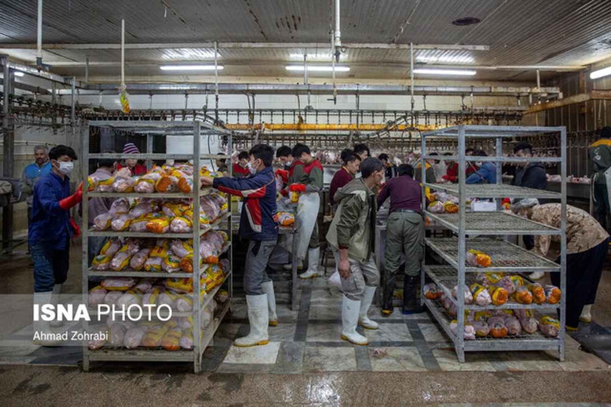 مرغ در بازار ۵۰۰۰ تومان گرانتر از نرخ مصوب!