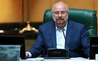 پرداخت یارانه جدید دولت از زبان رئیس مجلس + فیلم