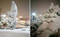 هم اکنون وضعیت شهر اراک/ بارش ۳۰ سانتیمتر برف +عکس