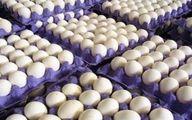 تعیین حقوق ورودی برای واردات تخم مرغ +سند
