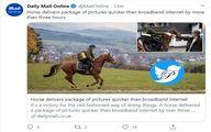 ارسال عکس با اسب سریعتر از اینترنت +عکس