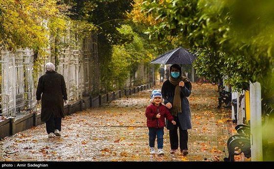 تصاویر: طراوت باران پاییزی در شیراز