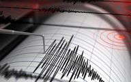 زمینلرزه ۴.۵ ریشتر در کرمان