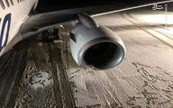 تصاویر: تصادف یک بوئینگ ۷۳۷ با یک خرس