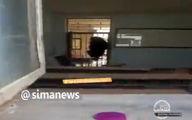 صحنه عجیب ورود یک خرس به مدرسه ای در هرمزگان! +فیلم
