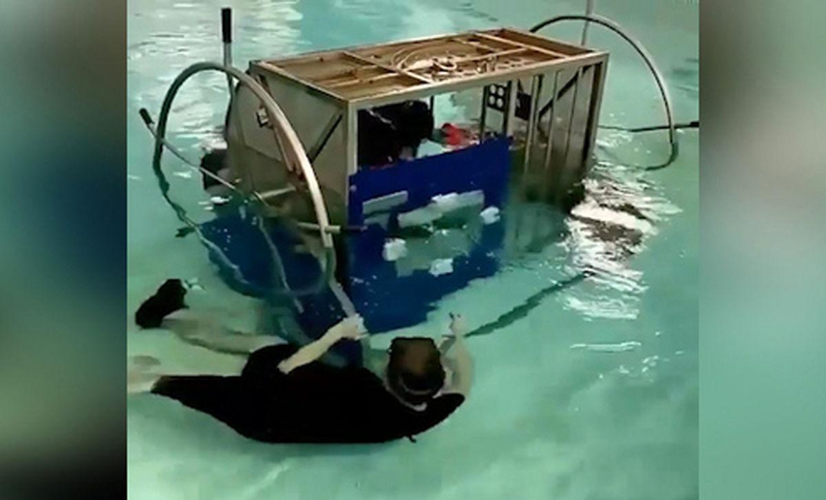 آموزش خلبان برای فرار از کابین سقوط کرده در آب + فیلم