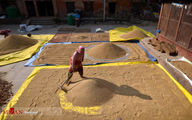 تصاویر: کشاورزان نپالی