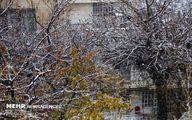 تصاویر: بارش برف پاییزی در سنندج