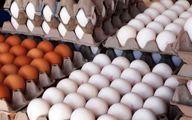 واکنش عجیب جهاد کشاورزی به گرانفروشی مرغ و تخم مرغ